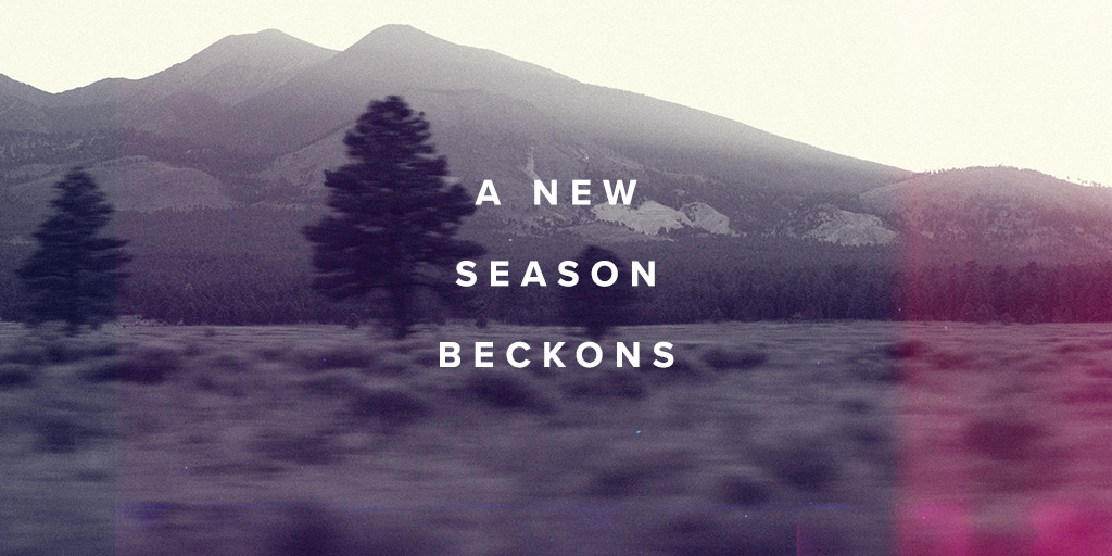 Fall Winter 2020 - mountain and trees
